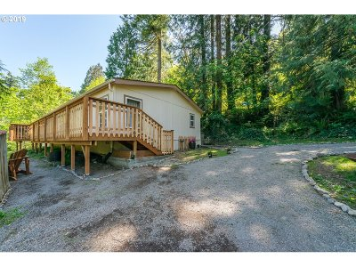 Kalama Single Family Home For Sale: 669 Modrow Rd