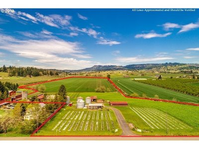 Newberg, Dundee, Lafayette Farm & Ranch For Sale: 17733 NE North Valley Rd