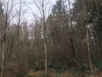 Camas Residential Lots & Land For Sale: Lessard