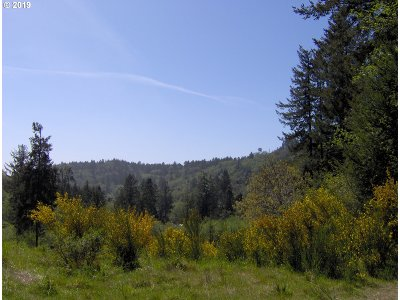 Brookings Residential Lots & Land For Sale: Maple Dr