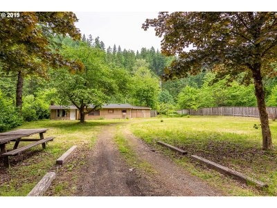 Single Family Home For Sale: 50233 McKenzie Hwy