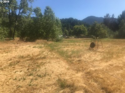 Canyonville Residential Lots & Land For Sale: 285 Pickett Ln