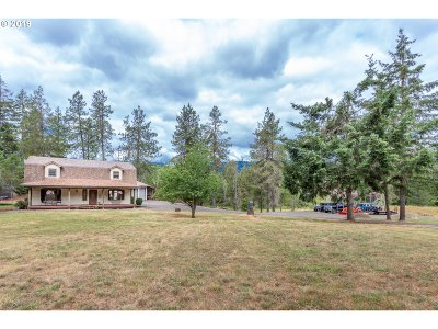 Roseburg Single Family Home For Sale: 424 Nob Hill Rd