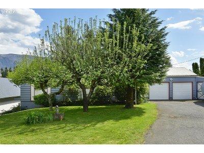 Stevenson Single Family Home For Sale: 600 NW Gropper Rd