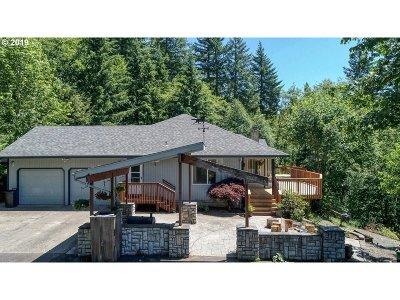 Clark County Single Family Home For Sale: 16707 NE 387th St