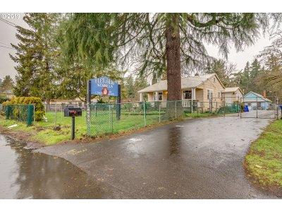 Portland Single Family Home For Sale: 12959 SE Powell Blvd