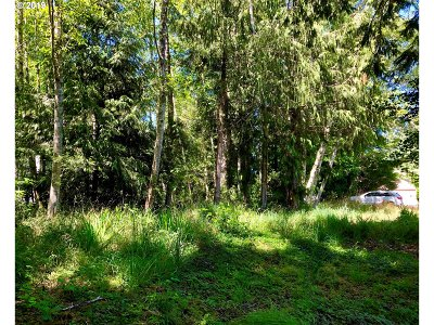 Residential Lots & Land For Sale: View Loop