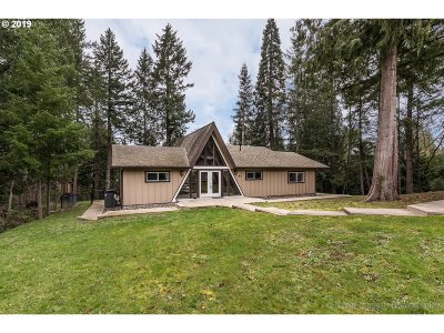 Scappoose Single Family Home For Sale: 52695 NW Eastview Dr