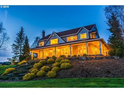 Brush Prairie Single Family Home For Sale: 12815 NE 242nd Ct