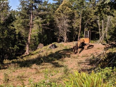 Gold Beach Residential Lots & Land For Sale: 28331 Hunter Creek Hts
