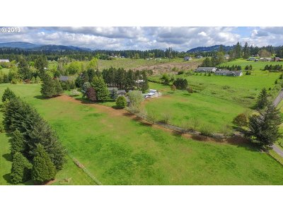 Washougal Single Family Home For Sale: 33514 SE 27th St