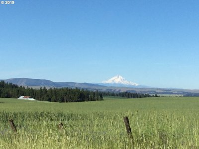 Goldendale, Lyle Residential Lots & Land For Sale: 256 W Winterstein Rd