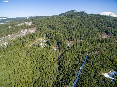 Cowlitz County Farm & Ranch For Sale: Rock Creek Rd