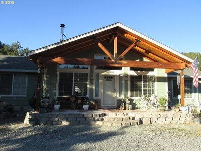 Riddle Single Family Home For Sale: 3565 Canyonville-Riddle Rd