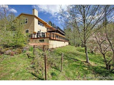 Single Family Home For Sale: 39448 E Knieriem Rd