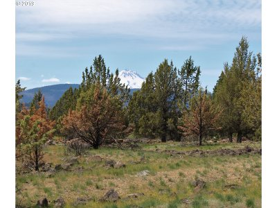 Clackamas County, Columbia County, Jefferson County, Linn County, Marion County, Multnomah County, Polk County, Washington County, Yamhill County Residential Lots & Land For Sale: 14043 SW Black Butte Ln