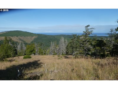 Gold Beach Residential Lots & Land For Sale: 95660 Spirit Ridge Rd #19