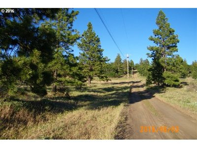 Goldendale WA Residential Lots & Land For Sale: $25,000