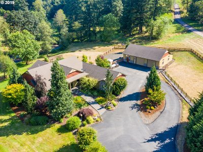 Washougal Single Family Home For Sale: 202 SE Blair Rd