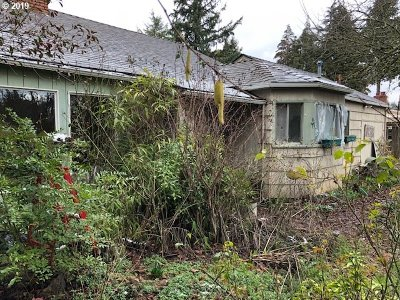 Salem Single Family Home For Sale: 677 Browning Avenue S