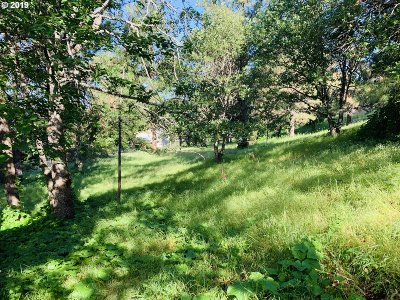 Goldendale, Lyle Residential Lots & Land For Sale: 403 Johnson Ave #2