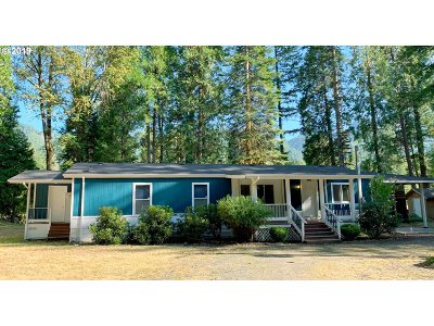 Single Family Home For Sale: 91163 Yeager Rd