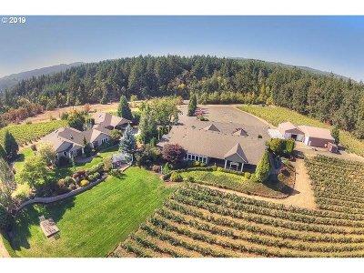 Dallas Single Family Home For Sale: 300 Reuben Boise Rd