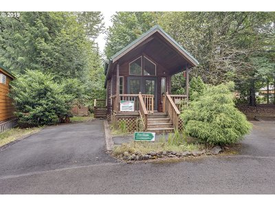Welches Single Family Home For Sale: 65000 E Highway 26 #FC289