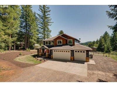 Battle Ground Single Family Home For Sale: 22307 NE 224th St