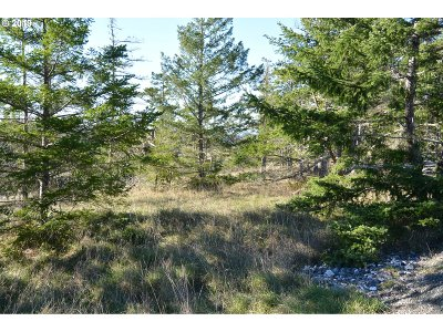 Residential Lots & Land Sold: Black Tail Spur