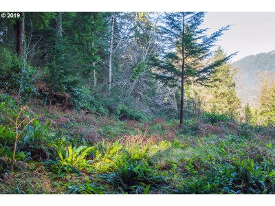 Manzanita Residential Lots & Land For Sale: Dewolf Rd