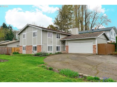 Keizer Single Family Home For Sale: 4764 18th Ave
