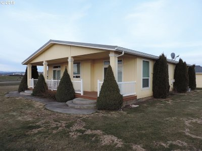 Goldendale Single Family Home For Sale: 40 Bailey Loop Rd