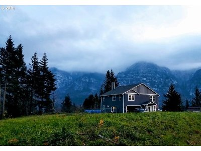 Skamania Single Family Home For Sale: 81 Nesmith Rd