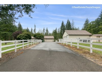 Washougal Single Family Home For Sale: 4020 NE 407th Ave