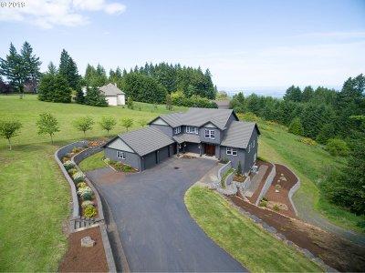 Hillsboro Single Family Home For Sale: 17871 NE Sunrise Peaks Ln