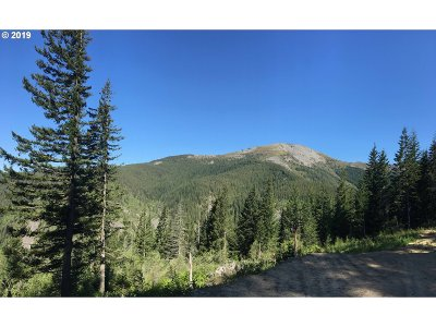 Residential Lots & Land For Sale: 1261 Snag Mountain Rd