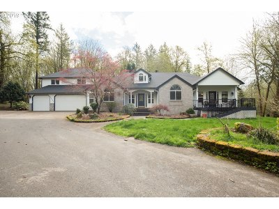 Battle Ground Single Family Home For Sale: 30103 NE 92nd Ave