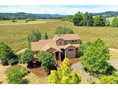 Single Family Home For Sale: 34405 NW Mountaindale Rd