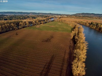 Newberg, Dundee, Lafayette Farm & Ranch For Sale: Ash Island