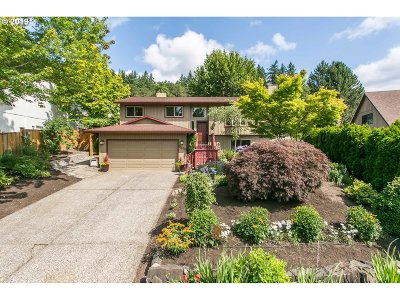 Clackamas Single Family Home For Sale: 11145 SE Mystery Springs Ct