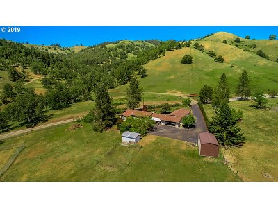 Roseburg Single Family Home For Sale: 14987 North Bank Rd