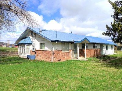 Elgin Single Family Home For Sale: 855 Palmer Junctio Rd