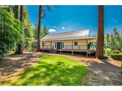 Battle Ground Single Family Home For Sale: 22105 NE 224th St
