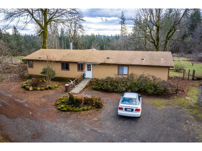 Washougal Single Family Home For Sale: 33727 SE 6th St