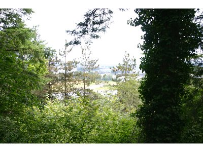 Portland Residential Lots & Land For Sale: NW Creston Rd