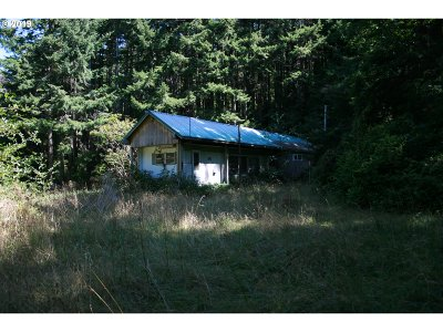 Port Orford Single Family Home For Sale: 45265 Hwy 101