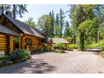 Single Family Home For Sale: 54850 McKenzie River Dr