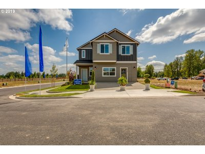 Battle Ground Single Family Home For Sale: 1011 NE 11th Ct #LOT4