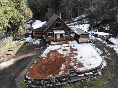 Single Family Home For Sale: 39910 Brice Creek Rd